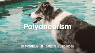 of Montreal - Polyaneurism [OFFICIAL MUSIC VIDEO]