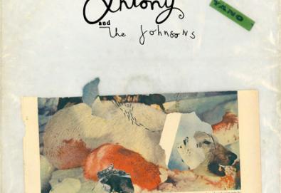Novo álbum de Antony & The Johnsons chega em Outubro e traz participação de Björk
