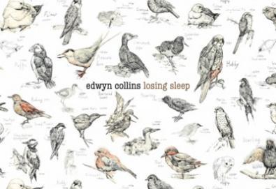 Novo single de Edwyn Collins traz participação do The Drums