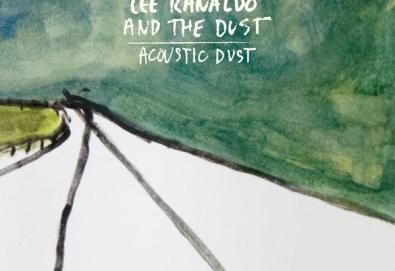 Acoustic Dust